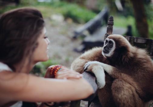 femme-brune-singe-mignon-regard-partage