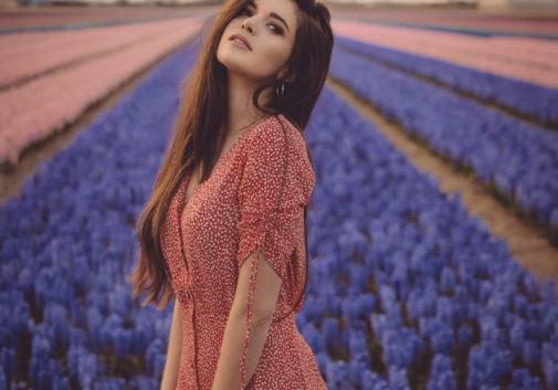fleur-soleil-brune-champ-nature