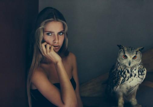 hiboux-escalier-owl-camille-rochette