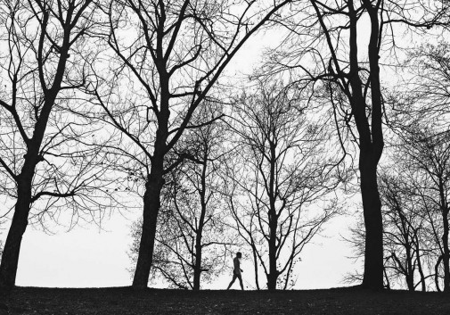 homme-nu-arbre-nature-marcher