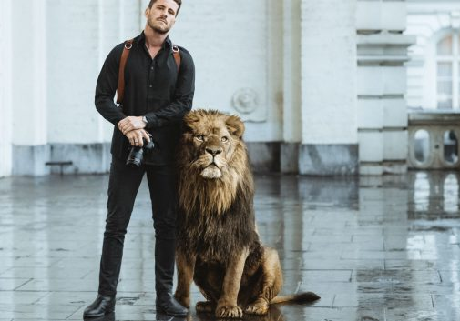 lion-photographe-protection-ville-animal