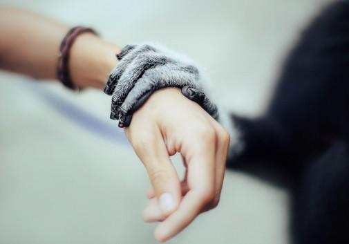 singe-humain-partage-main-touchant