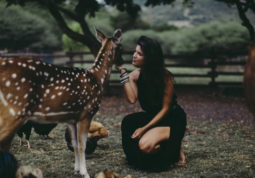 femme-biche-animaux-tendre-brune